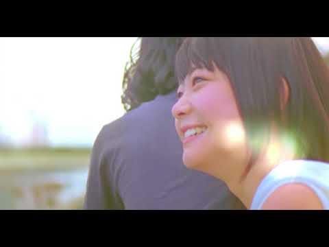 鶴 - 桜
