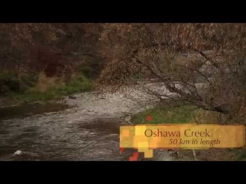 Oshawa, Ontario - Short Video of The City of Oshawa