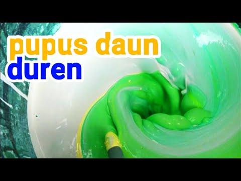 Membuat warna hijau pupus daun cara membuat cat tembok