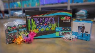 *NEW* GLO-FISH 10G AQUARIUM SETUP!!!