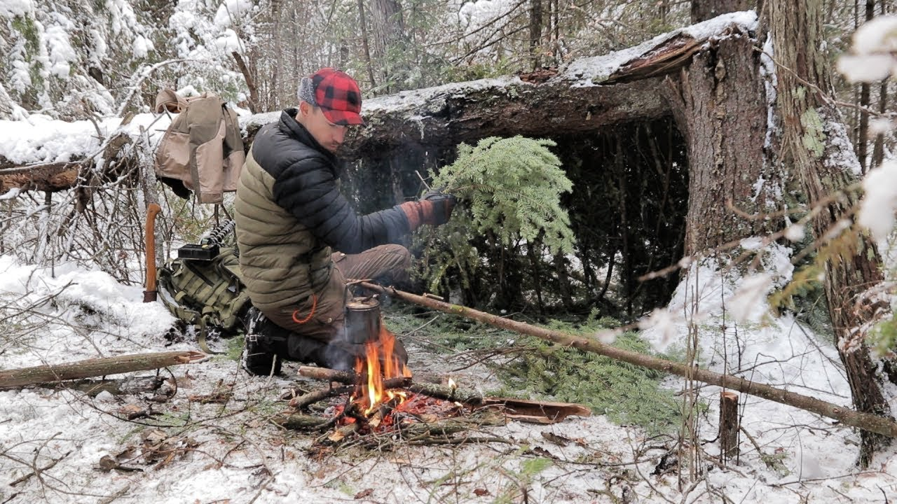 [VIDEO] - SOLO BUSHCRAFT CAMP  4 Items Only -Natural Shelter- Wild Game Over the Fire 5