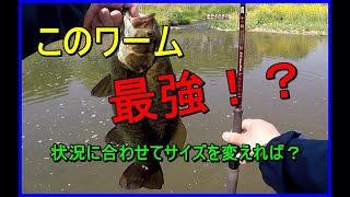 川スモールマウスバス釣り