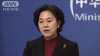 中国政府「デマだ」と否定 香港行政長官の更迭報道(19/10/24)