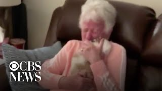 grandma-has-priceless-reaction-to-surprise-puppy-in-viral-video
