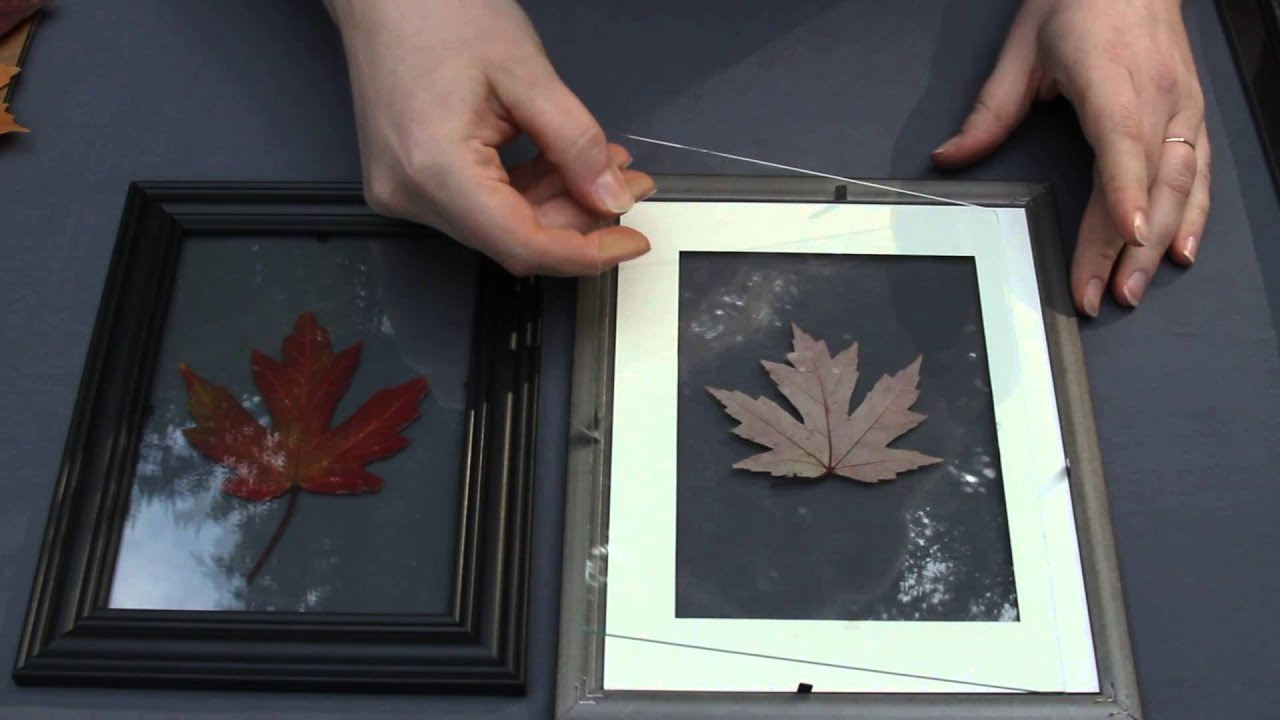 & Floating Leaf Wall Art: Dollar Store Crafts DIY Tutorial - YouTube