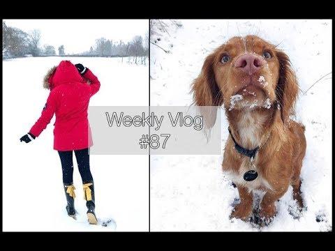 SNOW DAY!!! | xameliax Weekly Vlog #87