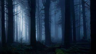 Dark Lullaby Music - Fairy Dolls