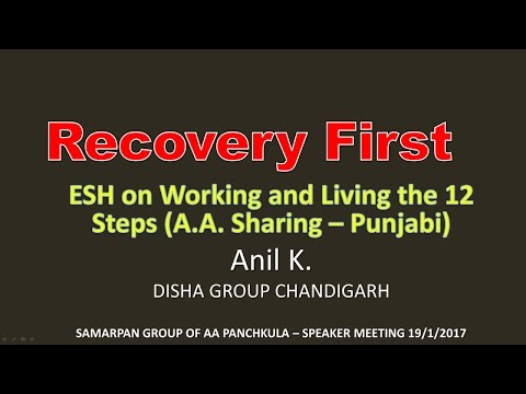 Anil K (Disha Group) Chandigarh  A.A. Speaker Sharing Punjabi - Living and Working the steps