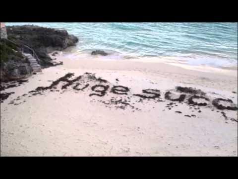2013 New Year Greeting In Seaweed