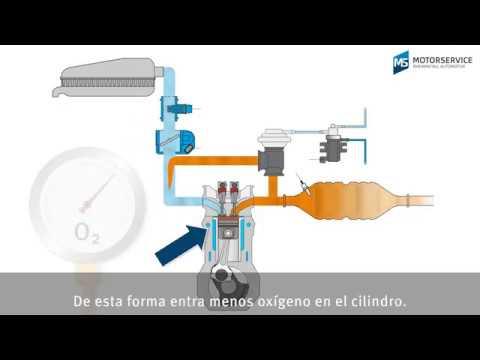 La recirculación de los gases de escape (EGR) explicada de forma sencilla