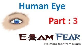 Physics Human Eye part 3 (Defect in vision) CBSE class 10 X