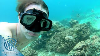 GILI AIR - FREEDIVING FROM THE BEACH IN FEBRUARY 2018