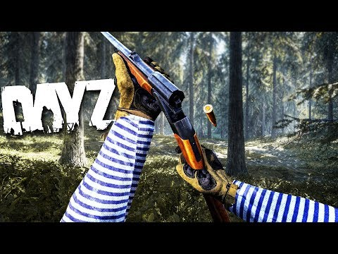 Being a DEADLY Lone Wolf in DayZ!