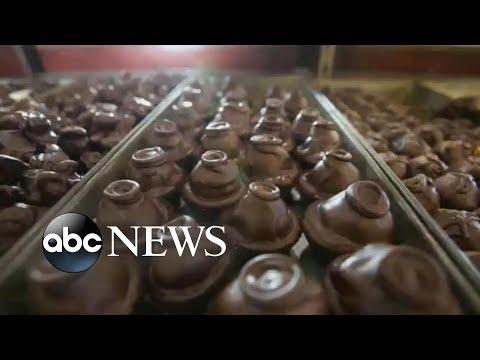 'GMA' Hot List: Dark chocolate may make you smarter, study suggests