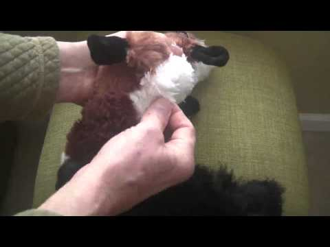 review-pawdoodles-krinklers-dog-toy,-fox,-large