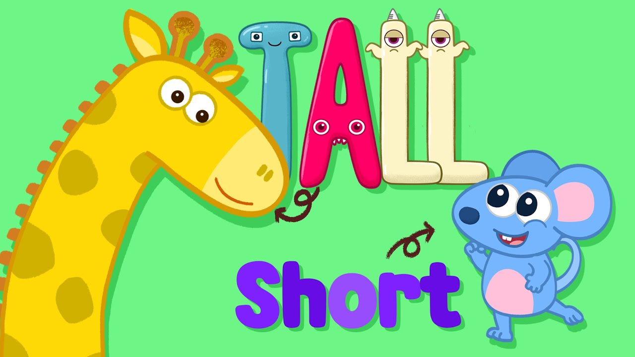 Tall and short song for kindergarten ! kids nursery rhymes with Monster ABC