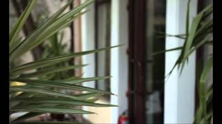 видео Современный Душанбе - столица Таджикистана