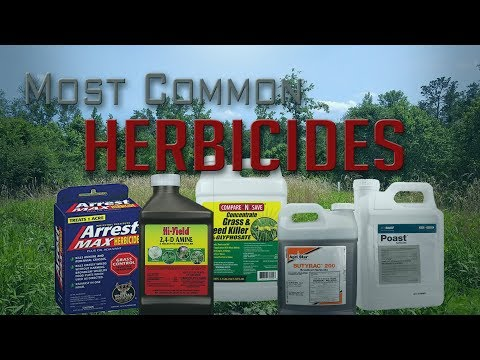 Five Most Common Food Plot Herbicides