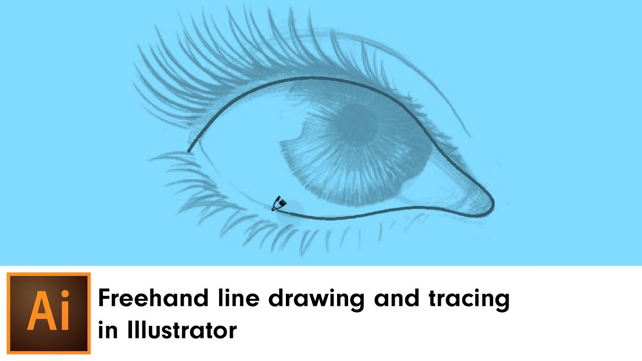 Freehand line drawing and tracing in Illustrator | DynamicSketch