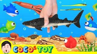 한국어ㅣ 우리집 파티에 해양동물과 고래상어 초대하기! 어린이 동물 만화, 동물이름 외우기ㅣ꼬꼬스토이