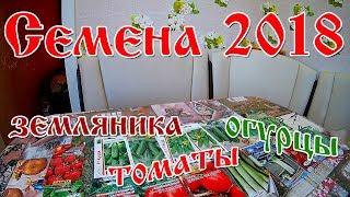Семена на 2018 год / огурцы / томаты / земляника