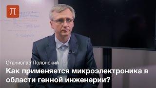 Анализ ДНК в наноканалах - Станислав Полонский