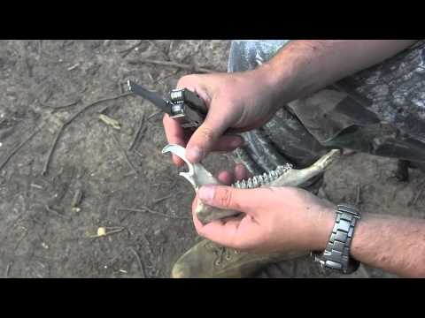 How to make bone fish hooks