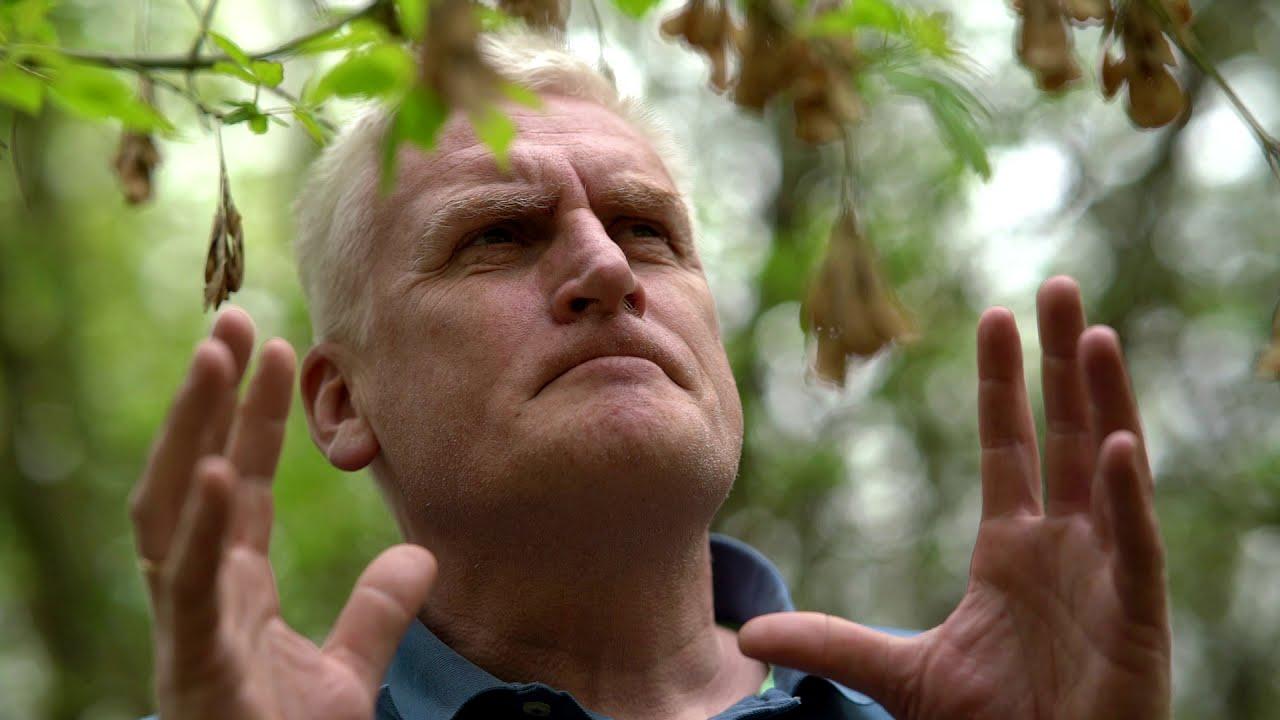 Kwiaty Polskie Julian Tuwim Fragmenty Bialystok Youtube
