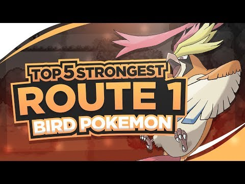 Top 5 Strongest Route 1 Birds in Pokemon