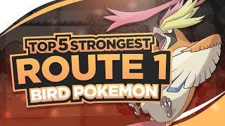 Top 5 Strongest Route 1 Birds in Pokemon