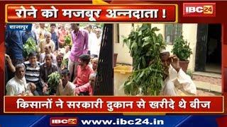 Shajapur : Soybean की फसल में फल नहीं निकलने से किसान नाराज |किसानों ने सरकारी दुकान से खरीदा था बीज