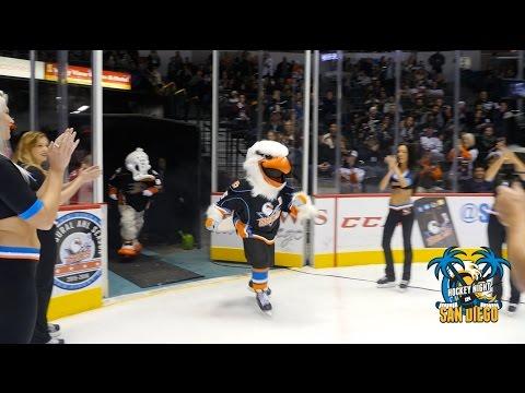 San Diego Gulls Mascot Gulliver is Unveiled