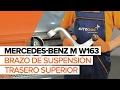 Cómo cambiar brazo de suspensión trasero superior en MERCEDES-BENZ M W163 INSTRUCCIÓN | AUTODOC