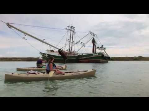 Sights and Sounds of Fall in Port Aransas, Texas