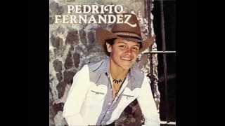Pedrito Fernández - EL POTRO NEGRO  [Pucheritos, 1983]