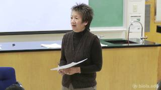 [BBST 465] Culture Making: Cultivation and Creation - Joanne Jung