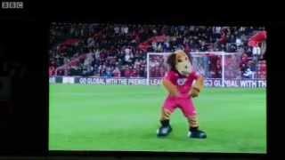 Southampton FC Mascot Dog Sammy Saints dances Gangnam Style