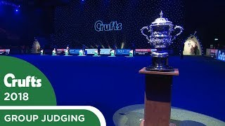 Best in Show Judging | Crufts 2018
