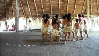 Video Chants - Tribus Los Boras download MP3, 3GP, MP4, WEBM, AVI, FLV Juni 2018