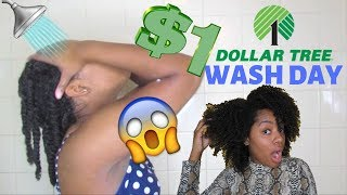 Wash Day Using ONLY DOLLAR STORE PRODUCTS! | Dollar Tree Wash Day 2019