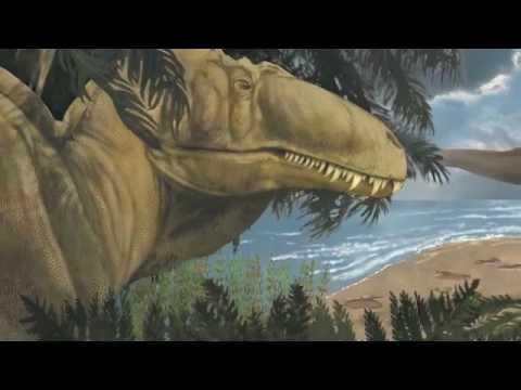 Glen Rose Dinosaur Tracks