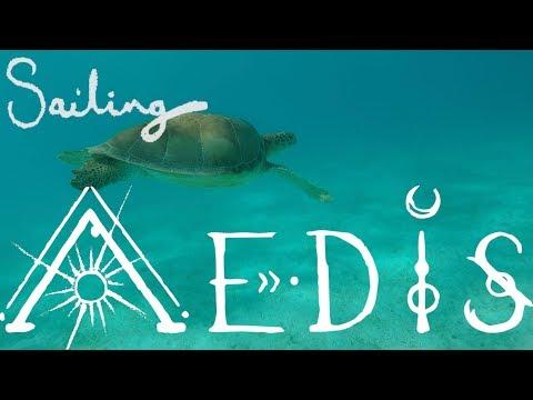 Sailing Aedis Episode 38: Tobago Cays Turtle Love