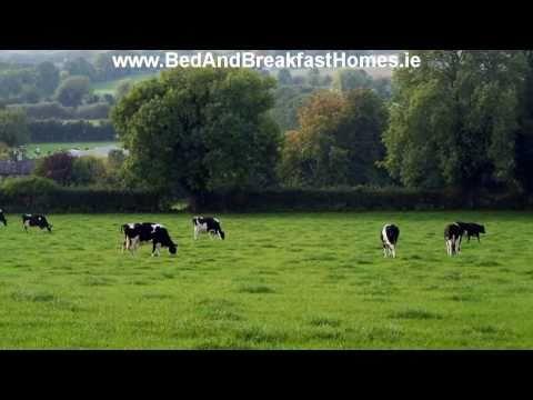 Ballindrum Farm B & B Athy Kildare Ireland