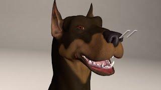 How dogs smell   AFP Animé