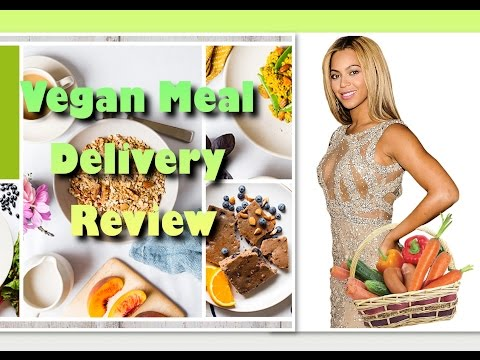 STARVATION Plan!? 22 Day Nutrition Meal Delivery Review