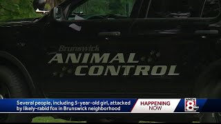 Suspected rabid fox attacks 5-year-old in Brunswick
