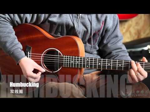 Fishman NEO-D Acoustic Guitar Pick Up 吉他拾音器