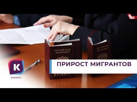Число переселенцев в Калининградскую область продолжает расти