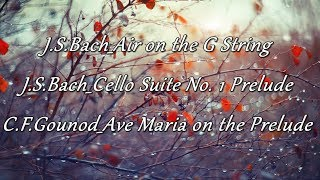 [Bach x Gounod]Bach Air on the G String|Bach Cello Suite No. 1|Gounod Ave Maria on the Prelude