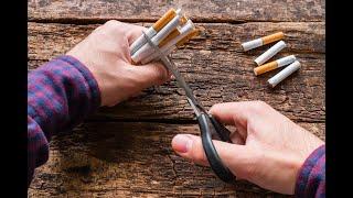 Видео легко бросить курить скачать